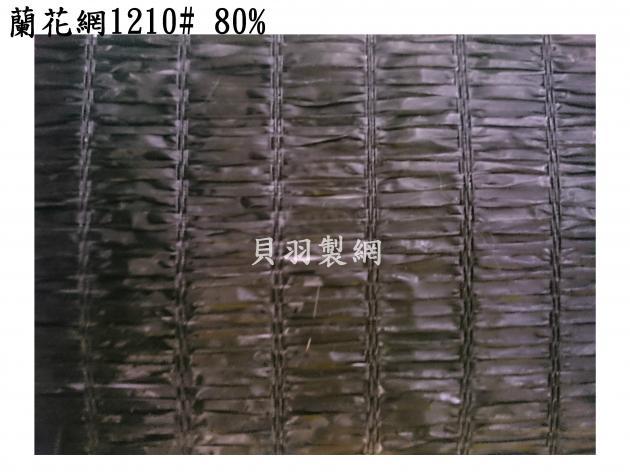 蘭花網 5