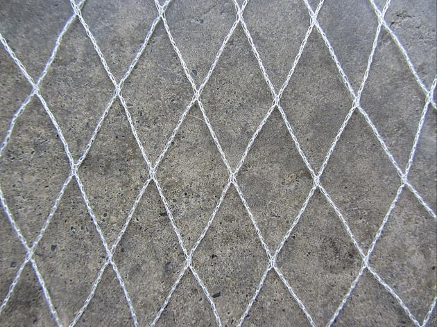 PE水稻防鳥網 1